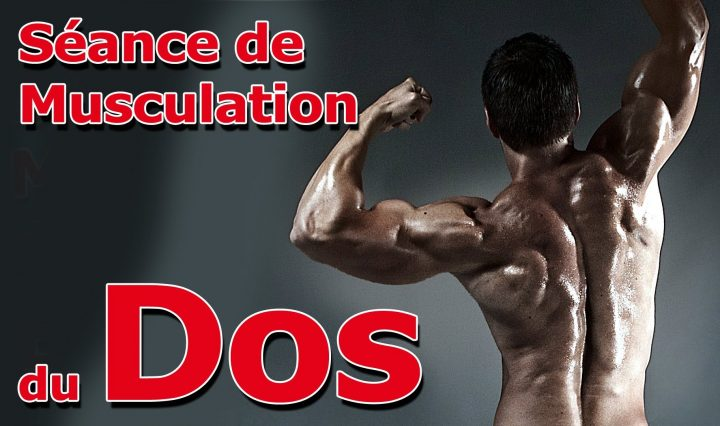 Seance Musculation Muscler le Dos